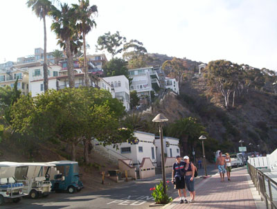 Das Brain and wife on Catalina Island market area